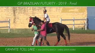 Apresentação dos animais do GP BRAZILIAN FUTURITY - 2019 - Final