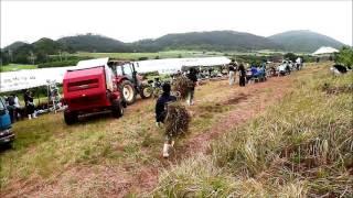 2017年八重山農林高校の草刈り大会
