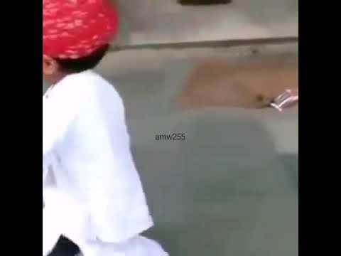 رقص هندي دجني thumbnail
