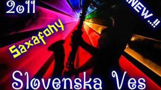 Slovenska Ves  New 2011 (3)