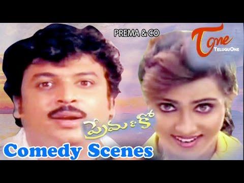 Prema & co Movie Comedy Scenes || Back to Back ||   Naresh || Vani Viswanath Photo Image Pic