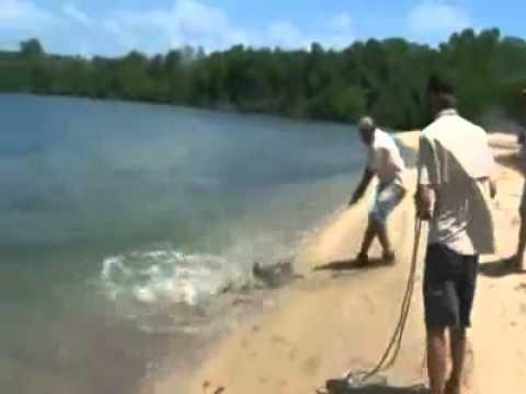 Senão filma-se, era mais uma história de pescador...