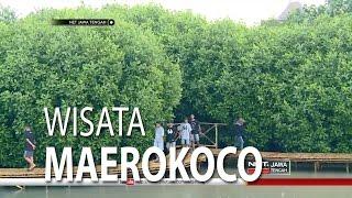 (5.54 MB) Serunya jalan-jalan di Walking Track Mangrove Taman Maerokoco - NET JATENG Mp3