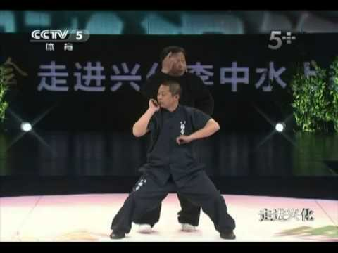 NeiGong du BajiQuan 1 : LiangYi Zhuang (French + English Sub) Image 1