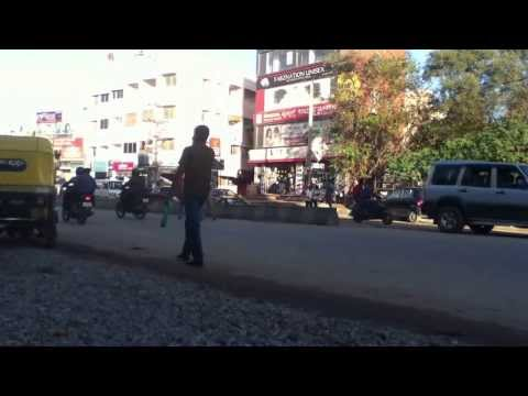 India Cow In The Street 1 video