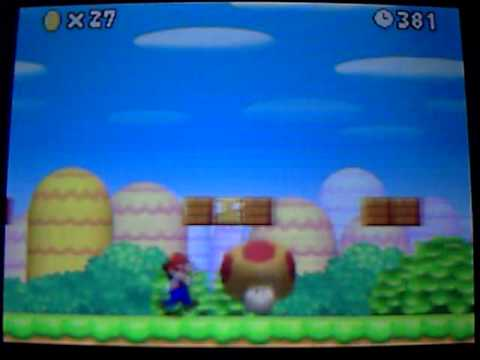 New Super Mario Bros glitch