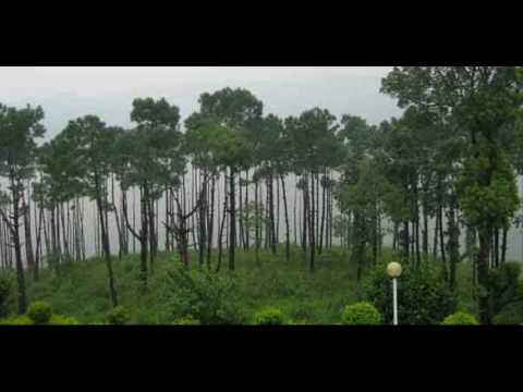 India Assam Experience North East India India Package Holidays Travel Guide Travel To Care
