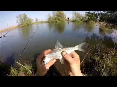 весенний запрет на рыбалку на оке