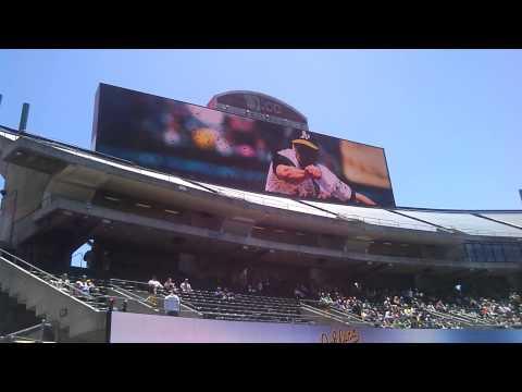Oakland Athletics 2015 Introduction