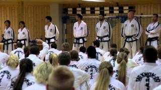 Семинар Таеквон-До в Норвегии 2014 (Willy Wan De Mortel, GM Bos) / Taekwon-Do Seminar in Norway 2014