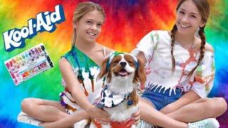 Kool-Aid vs Tie Dye Challenge   DIY   Quinn Sisters w/Toby