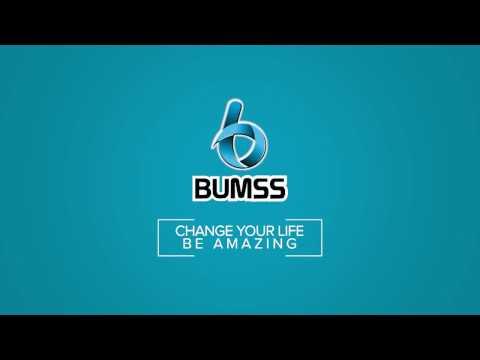 BUMSS TOUR TRAVEL PROMO DES  2016