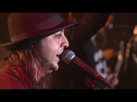 Daron Malakian live in Armenia 2015 (best moments)