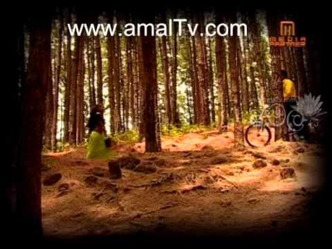Jivithe Tarunakale - Sinhala Karaoke - Www.amaltv video