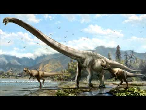 New species of long necked dragon dinosaur discovered in China