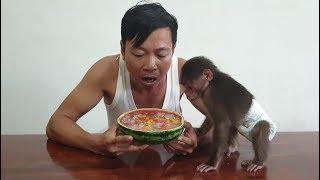Baby Monkey | Doo Tastes Fruits Jelly In Watermelon Made By Mom
