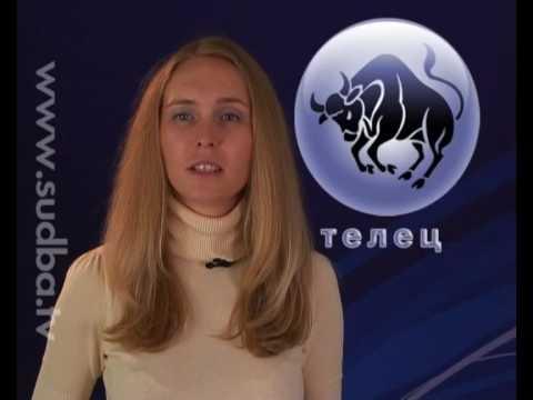 Телец. Видео гороскоп на 27.08.2009