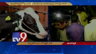 Go Rakshaks thrash train passengers for transporting Cows in Odisha