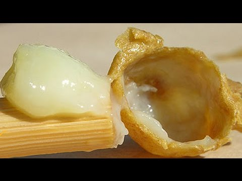 لن تصدق ما هي فوائد غذاء ملكات النحل لن تصدق فوائد السحرية للبشرة thumbnail