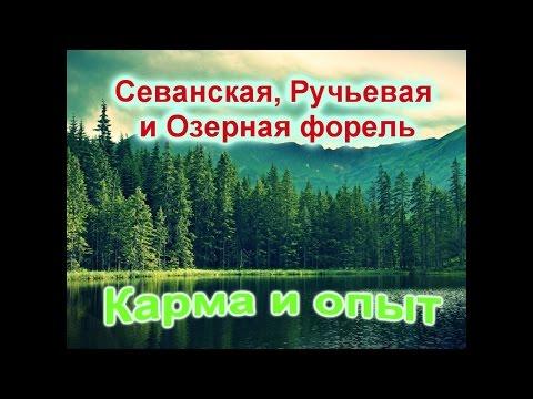 севанские рыбаки на русском