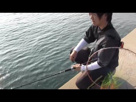 第6回シティーコムTV(有明海釣り対決その2)