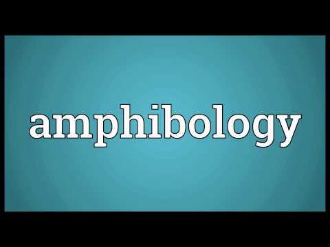 Header of amphibology