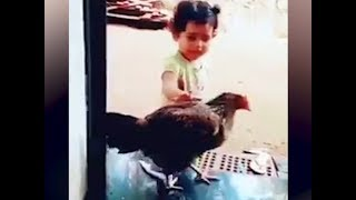 Watch: Cute girl asks her hen to wear slippers in viral video