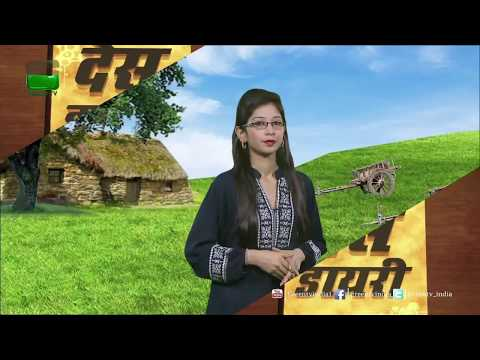 Des Diary: 27th May 2017 - Full Episode Green TV