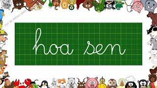Bé học chữ | Em tập viết chữ cái tiếng việt lớp 1 | Viết chữ hoa sen, nhoẻn cười | Dạy bé thông minh