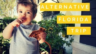 download musica ALTERNATIVE TRIP TO FLORIDA