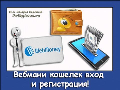 Как Правильно создать webmoney (вебмани) кошелек 2016.Подробная инструкция!