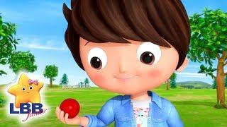 Lets Play !   Little Baby Bum Junior   Kids Songs   LBB Junior   Songs for Kids