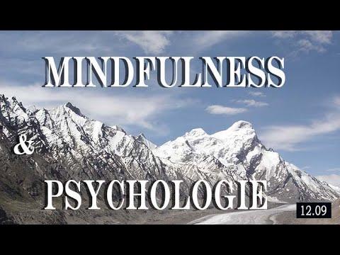 MINDFULNESS EN PSYCHOLOGIE