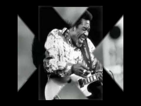 Luther Allison: Going Down
