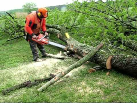Lift A Log: Rescue Technique