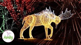 Instrumental Christmas Music & Amazing Christmas Lights 🎄 - Screensaver