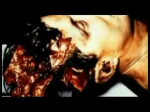 Jfk Proyecto Matriz John F Kennedy Su Asesinato 4 De 6 Masterdetikal video