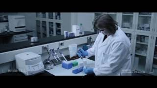 Amplify Sample with The StepOnePlus™ Real Time System  (qPCR step 6)