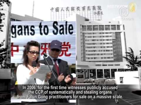 Human Rights Organization: Luo Gan Is a Major Culprit in Live Organ Harvesting