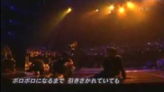 Kame - Kizuna