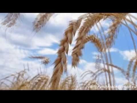Слуцкий Игорь - Не жалейте о прожитом