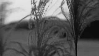 Watch Madredeus Milagre video