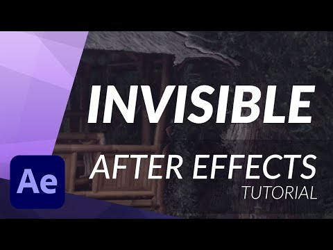 how to become invisible quickly