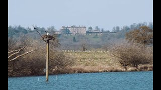 Bird Watching magazine visits Rutland Water to see the Ospreys!