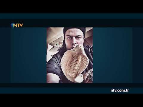 İllüzyonist Aref'i kobra yılanı ısırdı (Panzehir Türkiye'de yok)