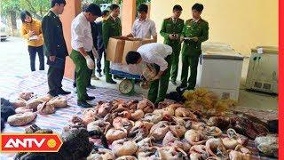Buôn Bán Động Vật Hoang Dã - Trò Lừa Triệu Đô (P1)   ĐIỀU TRA   ANTV