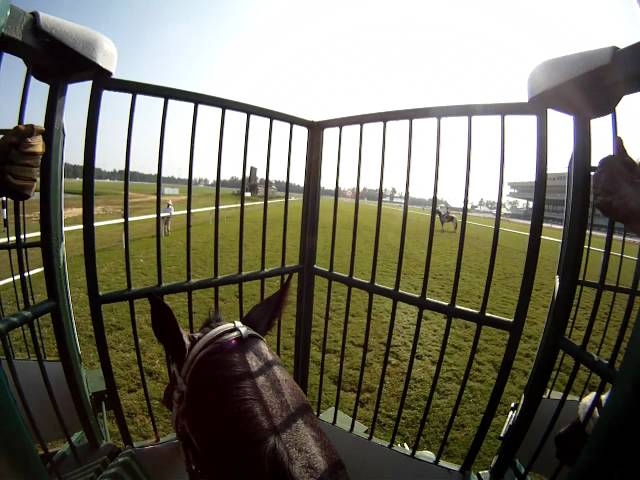 EquiSight Jockey Cam Comes to Colonial Downs