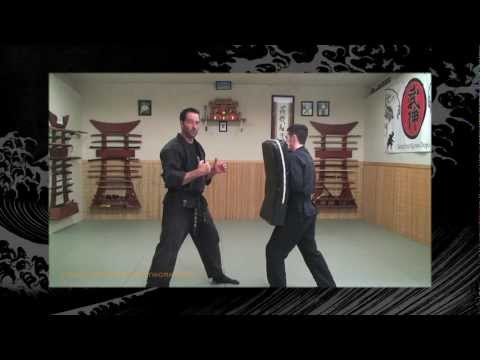 Taijutsu: Bujinkan/Ninjutsu Lesson - Ninja Training Video Blog Image 1
