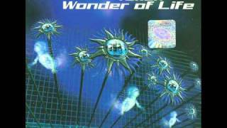 Watch Tukan Wonder Of Life video