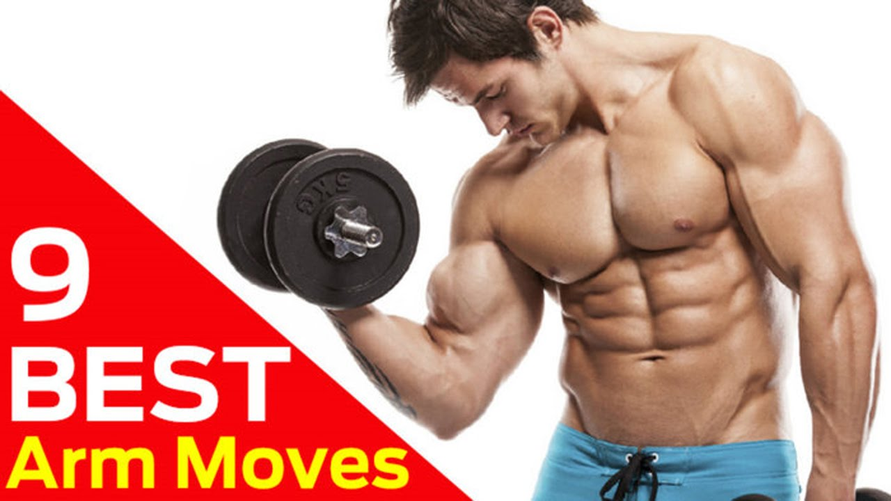 The Best Bicep Workout For Beginners  No Equipment Needed